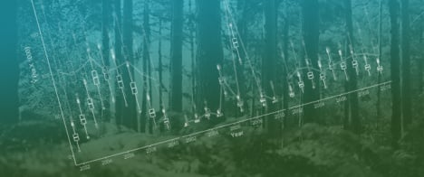 Estimation of Forest Disturbance from Retrospective Observations in a Broad-Scale Inventory