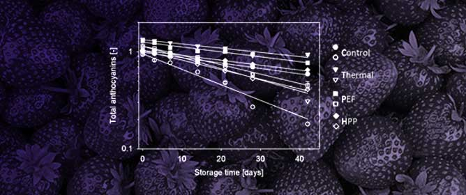 Matrix- and Technology-Dependent Stability and Bioaccessibility of Strawberry Anthocyanins during Storage