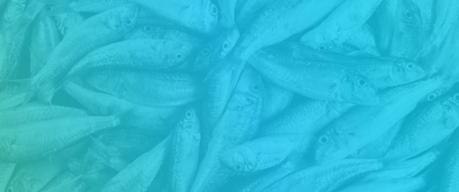 Trends in Growth Modeling in Fisheries Science