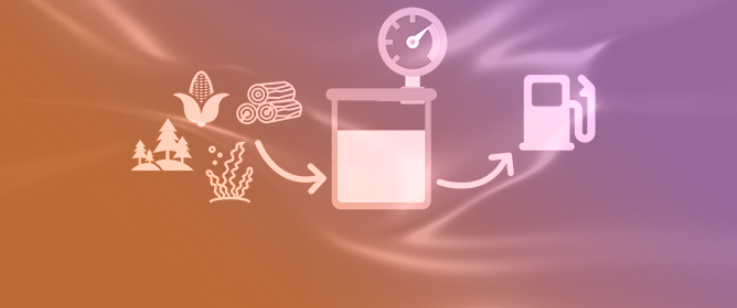 Recent Catalytic Advances in Hydrotreatment Processes of Pyrolysis Bio-Oil