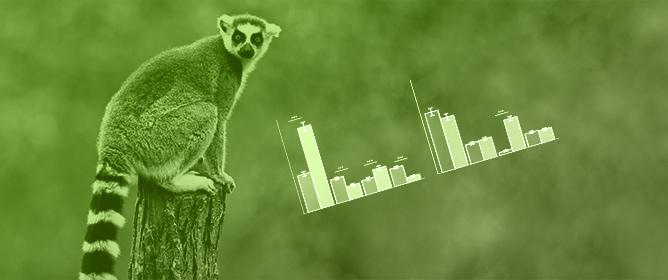 Effects of Enclosure and Environmental Enrichment on the Behaviour of Ring-Tailed Lemurs (<em>Lemur catta</em>)