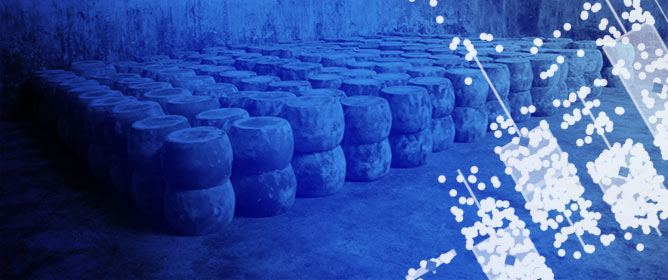Quality Control of Fiore Sardo PDO Cheese: Detection of Milk Thermization and Production Chain