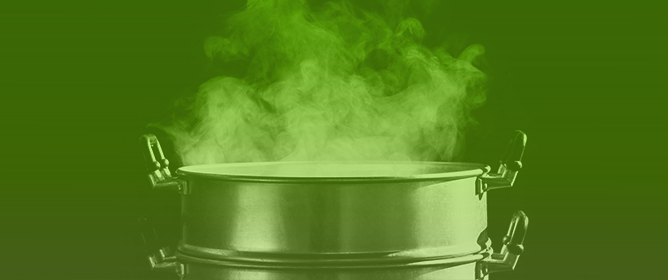 Loss or Gain of Lipophilic Bioactive Compounds in Vegetables after Domestic Cooking? Effect of Steaming and Boiling