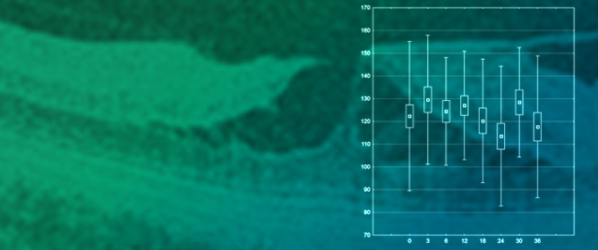 Morphological Changes in Lamellar Macular Holes According to SD-OCT Examination over a Long Observation Period