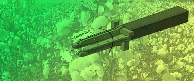Opportunities for Robotic Systems and Automation in Cotton Production