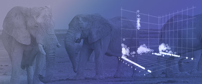 Vocal Creativity in Elephant Sound Production