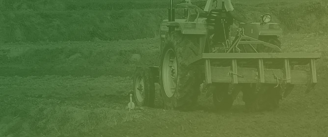 The Effects of Compaction and Tillage Systems on the Bulk Density and Moisture of Soil